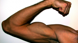 Vitamin-D-supplements-may-battle-muscle-fatigue-and-improve-efficiency_strict_xxl