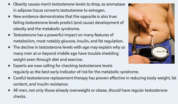 Low_Testosterone_Promotes_Abdominal_Obesity_in_Aging_Men_-_Life_Extension