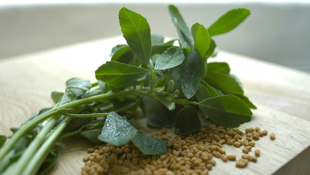 fenugreek_16x9