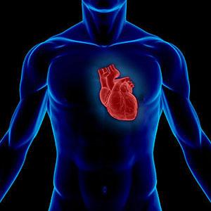 Yaz-Heart-Attack-1
