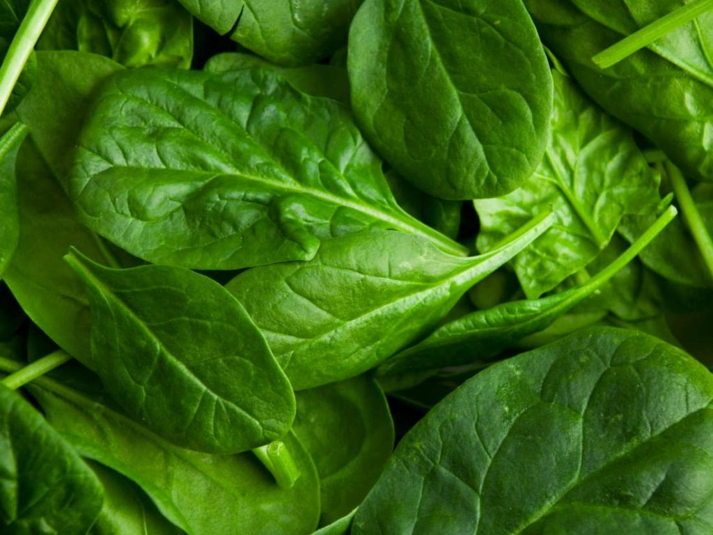 spinach testosterone booster