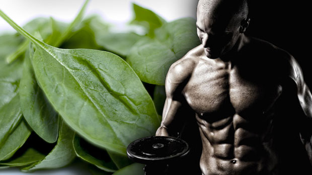 bodybuilder eating spinach